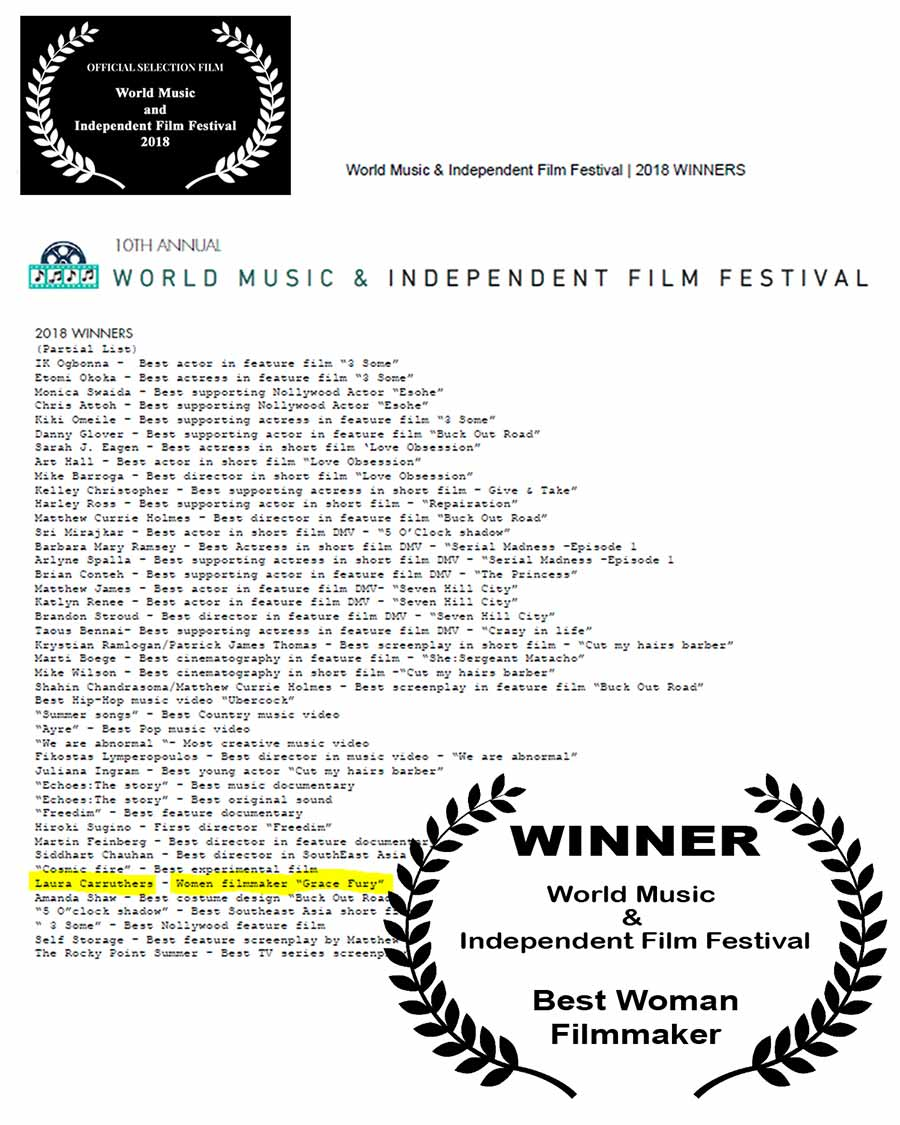 Winner - World Music and Independent Film Festival Collage - D.C.